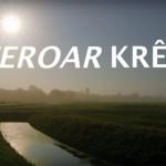 feroarkreft-800x533